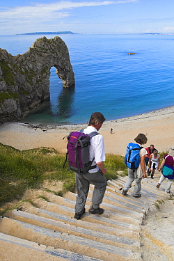 Walkers descending steps down to the beach at Durdle Door, Dorset, England Jurassic Coast World Heritage Site  -  Adam Burton/ npl