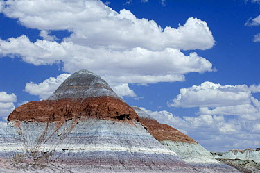 The Tepees, Cones, Painted Desert and Petrified Forest NP, Arizona, USA May 2007  -  Philippe Clement/ npl