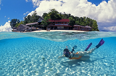 Woman Snorkler with tropical island in background, split level, Indo-Pacific  -  Jurgen Freund/ npl