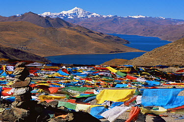 Stone pile and prayer flags at Yamdrok Lake, Tibet 2007  -  Gavin Maxwell/ npl