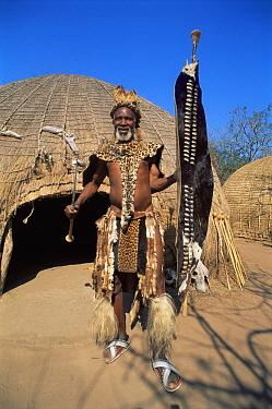 Zulu chief wearing animal skins outside hut Simunye Zulu Lodge South Africa  -  Dan Burton/ npl