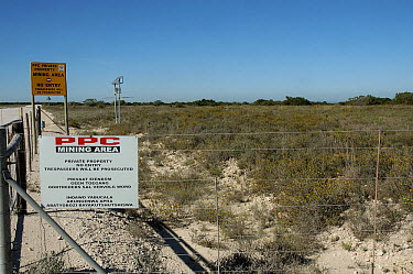 Threat to habitat of Albany adder (Bitis albanica) from cement mining operations, Grassy Ridge, nr Port Elizabth, South Africa  -  Tony Phelps/ npl