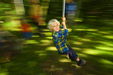 Young boy swinging through the forest, Letham, Fife, Scotland, UK  -  Niall Benvie/ npl