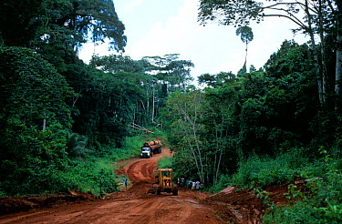 Logging truck loaded with timber on road through tropical rainforest, Central Africa Overloaded trucks put strain on national road maintenance budgets, requiring subsidizing of logging with donor fund...  -  Karl Ammann/ npl