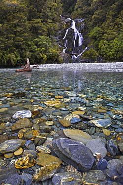 Fantail Falls and river, Mount Aspiring National Park, South Island, New Zealand  -  Adam Burton/ npl