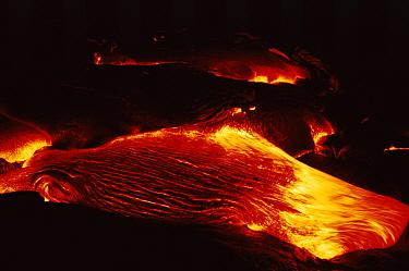 Pahoehoe lava flows into Lae' apuki bench, Kilauea volcano, Hawaii, USA Jan 2000  -  Doug Perrine/ npl