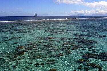 SY Adele, 180 foot Hoek Design, underway close to the reef off Huahine Island, French Polynesia  -  Rick Tomlinson/ npl