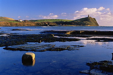 Wave-cut platform and rock pools at Kimmeridge Bay, with Clavell's Tower on headland in the background Jurassic Coast World Heritage Site, Dorset, UK  -  Adam Burton/ npl