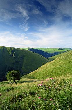 Countryside nr Alstonefield Peak District NP, Derbyshire, England, UK  -  David Noton/ npl