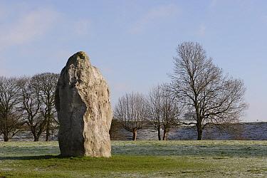 Stone megalith at Avebury Stone Circle (World Heritage Site) Avebury, Wiltshire, UK  -  Michael Hutchinson/ npl