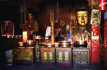 Buddha statue and devotional artifacts, Lhasa, Tibet 2007  -  Gavin Maxwell/ npl