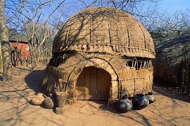 Zulu hut with traditional earthenware pots in village Simunye Zulu Lodge South Africa  -  Dan Burton/ npl
