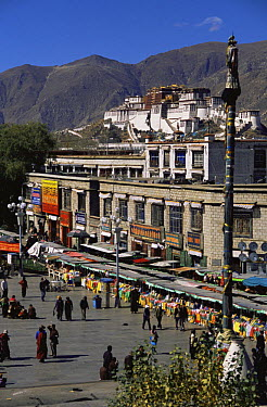 Street scene with The Potala in the background: The Dalai Lama's ex-residence, Lhasa, Tibet 2007  -  Gavin Maxwell/ npl