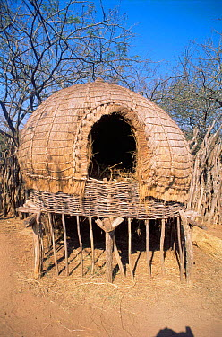 Zulu hut on stilts for storing crops Simunye Zulu Lodge, South Africa  -  Dan Burton/ npl