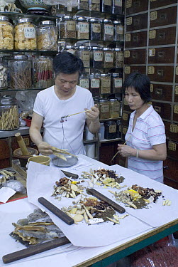 Pharmacist weighing ingredients in Chinese medicine store, Hong Kong, September 07 'Wild China' series  -  Gavin Maxwell/ npl
