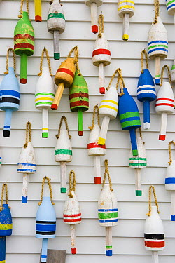 Wooden lobster buoys hang on a wall in Stonington, Maine, USA  -  Jerry Monkman/ npl