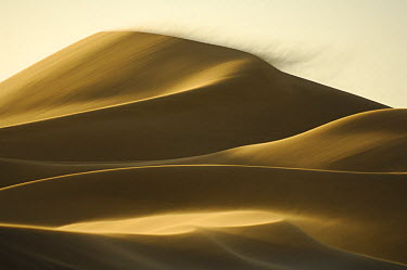 Close to the city of Swakopmund a sand dune is on the move The landscape of the Namib Dunes is formed by the powerful force of desert winds These winds gradually push the dunes in a north-westerly dir...  -  Solvin Zankl/ npl