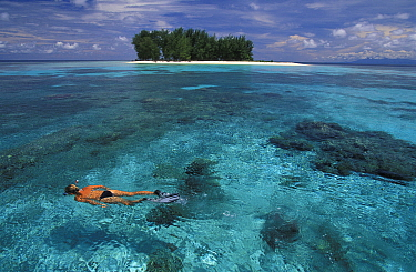 Snorkeling in clear waters off small and uninhabited Dondola Island, Togian Islands, Sulawesi, Indonesia  -  Roberto Rinaldi/ npl