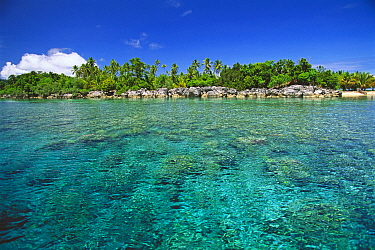 Limestone rocks and tropical vegetation, Sulawesi, Indonesia  -  Roberto Rinaldi/ npl