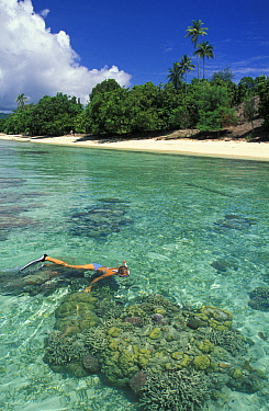 Woman snorkeling over some healthy coral boulders off Walea Island, Togian Islands, Sulawesi  -  Roberto Rinaldi/ npl