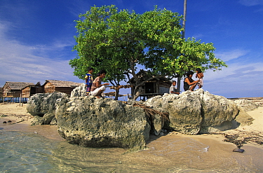 Palafitte cottages built on stilts, southern tip of Walea Island, Toigan Islands, Sulawesi, Indonesia  -  Roberto Rinaldi/ npl