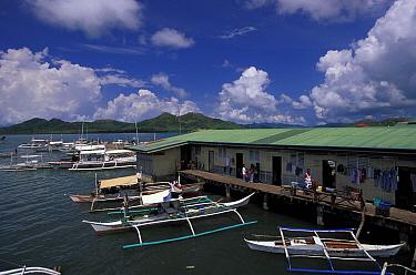 Bangkas in small harbour of Busunga Coron Town, Bususnga islands, Palawan, Philippines  -  Roberto Rinaldi/ npl