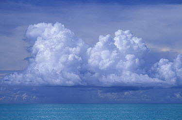 Stormy clouds form over the warm waters of Belize  -  Roberto Rinaldi/ npl