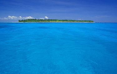 One of the islands of Turneffe reef, Belize  -  Roberto Rinaldi/ npl