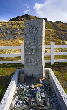 Sir Ernest Shackleton's grave, Grytviken whaling station, South Georgia, Antarctica November  -  Roy Mangersnes/ npl