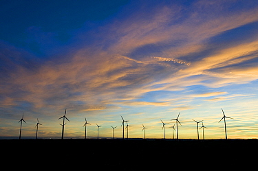 Wind farm with numerous wind turbines at dawn, Europe, November 2008  -  Laurent Geslin/ npl