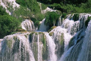 Waterfall in the Skradin National Park, Croatia 1994  -  Gary John Norman/ npl