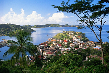St George's, capital of the Caribbean island of Grenada, 1993  -  Gary John Norman/ npl