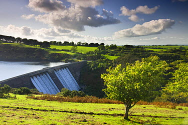 Meldon Reservoir in Dartmoor National Park, Devon, England  -  Adam Burton/ npl