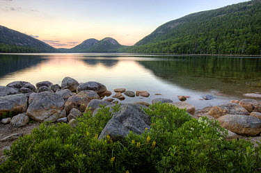 The Bubbles and Jordan Pond in Acadia National Park, Maine, USA, July 2008  -  Jerry Monkman/ npl
