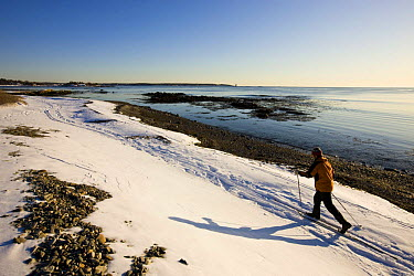 A man cross country skiing along the coast at Odiorne Point State Park in Rye, New Hampshire, USA Model Released winter 2007  -  Jerry Monkman/ npl
