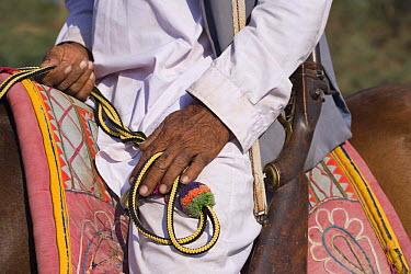 Close up of hands, reins and gun of traditionally dressed Indian gentleman on horseback, Gujarat, India, 2008  -  Kristel Richard/ npl