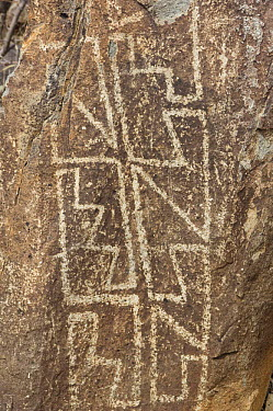 Native American rock engraving from around 1000 to 1400 AD, Three Rivers Petroglyph NRA, New Mexico, USA, February 2009  -  Rob Tilley/ npl
