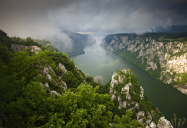 Low clouds over the River Danube flowing through the Iron Gate Gorge, Djerdap National Park, Serbia, June 2009  -  WWE/ Smit/ npl