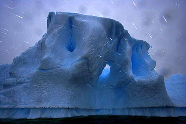 Rain falling in front of iceberg, Antarctica (non-ex)  -  Andy Rouse/ npl