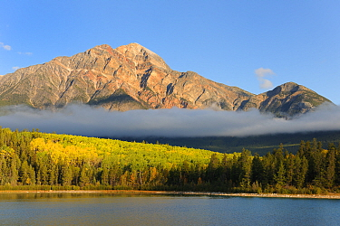 Pyramid Mountain towering above Pyramid Lake with low clouds over forest, Jasper National Park, Rocky Mountains, Alberta, Canada, September 2009  -  Eric Baccega/ npl