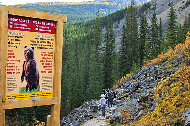 Bear sign stating official park safety information and regulations regarding bear encounters, Banff National Park, Rocky Mountain, Alberta, Canada, September 2009  -  Eric Baccega/ npl