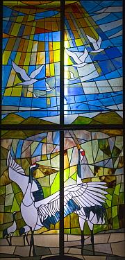 Stained glass window depicting Japanese cranes (Grus japonensis) Akan, Hokkaido, Japan  -  David Tipling/ npl