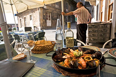 Paella dish in a Vigo restaurant, Galicia, Spain July 2008  -  Angelo Gandolfi/ npl