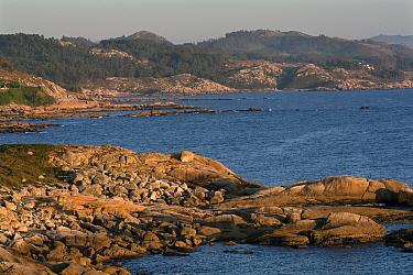 Rocky coastline at Cabo de Udra, Vigo, Galicia, Spain July 2008  -  Angelo Gandolfi/ npl