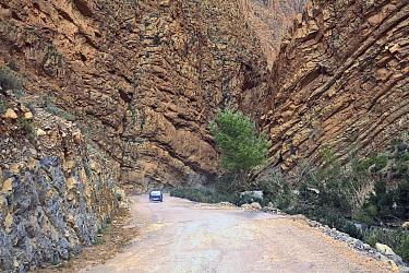 Car driving along road in Dades gorge, Atlas mountains, Morocco March 2007  -  Angelo Gandolfi/ npl