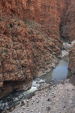 Dades gorge, Atlas mountains, Morocco March 2007  -  Angelo Gandolfi/ npl