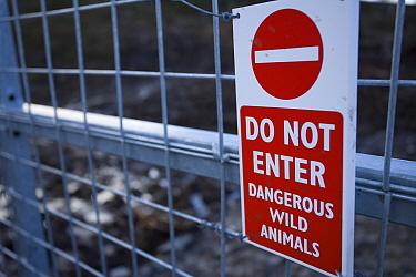 No Entry' sign on gate to wild boar enclosure, Alladale, Highlands, Scotland, UK  -  Pete Cairns/ npl