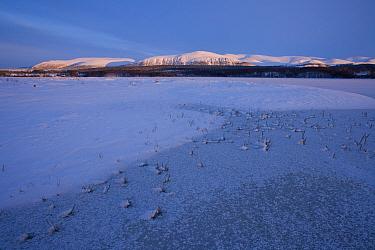 Loch Insh at dusk in winter, Cairngorms NP, Highlands, Scotland, UK, February 2009  -  Pete Cairns/ npl