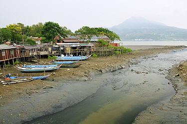 Dilapidated stilt houses and sampan style fishing boats on a tidal creek in the Danshuei river estuary, Danshuei, Danshui Taiwan September 2009  -  Nick Upton/ npl