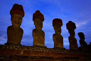 Silhouette of five giant Moai statues at dawn in Ahu Nau Nau, Anakena beach, Easter Island, Pacific ocean, November 2004  -  Oriol Alamany/ npl